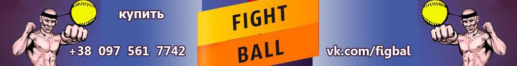 Купить fightball