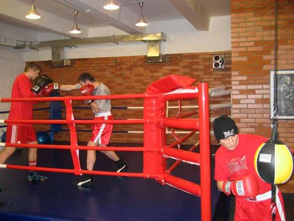 Бокс с нуля в домашних условиях